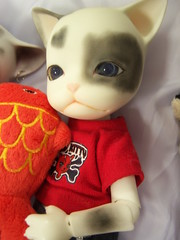 100_5985 (EilonwyG) Tags: bjd abjd pipos kitty cat baha
