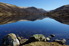 Reflecting on Loch Callater (steve_whitmarsh) Tags: scotland highlands moor heather mountain aberdeenshire scottishhighlands water loch lake callater hills reflection rocks nature
