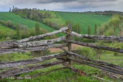 HFW - Happy Fence Wednesday... (Ivan van Nek) Tags: nikond3200 nikon d3200 fence hfw happyfencewednesday france frankreich frankrijk hek afrastering hautegaronne anan languedocroussillonmidipyrénées midipyrénées spring lente