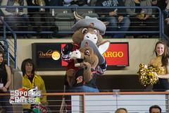 2017-03-31 Rush vs Grizzlies