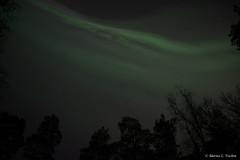 DSC_5346.jpg (marius.vochin) Tags: lights night sky stockholm longexposure outdoor amasing northenlights
