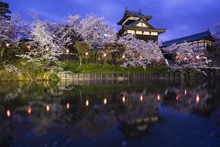 Koriyama Castle Park in Spring