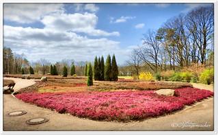 Heidegarten im Frühling