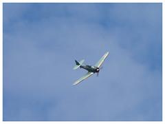 North American AT-6B-M0 Zero - F-AZZM (Aerofossile2012) Tags: northamericanat6bm0zero fazzm zero toratoratora avion aircraft aviation airshow laferté 2015