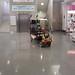 my shopping cart (2)