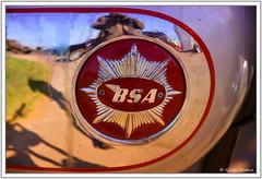 Auto-portrait in BSA (GilDays) Tags: france normandie normandy leneubourg véhiculeancien véhiculecollection moto byke nikon nikond800 d800 eure autoportrait rouge red photographe photographer bsa motorcycle reflet reflection
