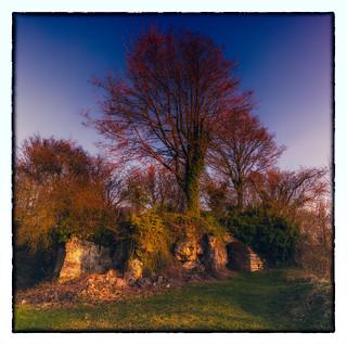 les derniers vestiges du château du Mont-Aimé