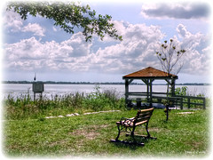 Lake Dora HBM (Chris C. Crowley- Editing for the next month or so) Tags: lakedora mountdoraflorida happybenchmonday lake scenic landscape bench gazebo water nature heron bird wildlife animal grass clouds