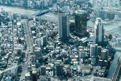 Tokyo Skytree, by Nikken Sekkei, 2012 (Anita Pravits) Tags: aussichtsturm brücke fernsehturm flus japan komagatabridge nihon nippon skytree sumidariver tokio tokyo broadcasttower observationtower watchtower