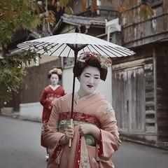 maiko 4016 (s.alt) Tags: maiko 舞妓 elegant kyoto japan traditional japanese female portrait apprenticegeisha kyotomaiko kanzashi women makeup 簪 hairornaments hairstyle cloth flowers oshiroi 白粉 geisha