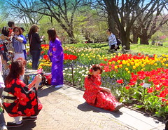 Picture with Spring Background (dimaruss34) Tags: newyork brooklyn dmitriyfomenko image spring brooklynbotanicgarden flowers women
