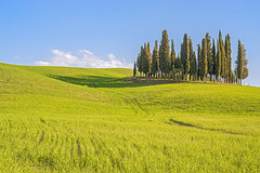 Tuscany or WIndows? (ElGrillo89) Tags: pentax pentaxart pentaxk1 k1 fullframe sky cielo clouds nuvole blu verde cipressi alberi trees valdorcia toscana tuscany italy italia windows fields campagna campagnatoscana country countryside