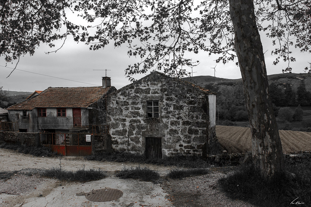 1600-castanheira (33)