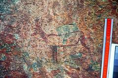DSC06116 - BONGANI Spot 2 - BONGANI Spot 2 (HerryB) Tags: 2017 southafrica afrique afrika sar sonyalpha77 sonyalpha99 tamron alpha bechen fotos photos photography sony herryb mpumalanga rockart rockpaintings peintres rupestres san zeichnungen höhlenmalerei paintings bushmen buschmänner dstretch harman jon jonharman enhance falschfarben restauration bongani lodge mountain bonganimountainlodge spot2