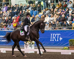 17429_Sydney_CDI_GPFS_0056.jpg (FranzVenhaus) Tags: athletes dressage australia equestrian riders horses ponies rug siec nsw sydney newsouthwales aus