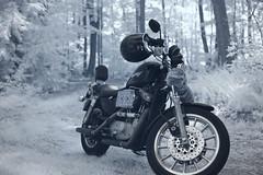 IMG_2070 (Dan Correia) Tags: belchertown motorcycle harleydavidson infrared canonef50mmf14usm 15fav topv111 topv333 510fav topv555