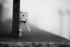 Shy (Inelund) Tags: cute dof danbo blackwhitephotos canoneos5dmarkii danbolove