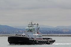 Sandra Hugh_001 (Walt Barnes) Tags: boat ship vessel richmond tugboat tug sanpablobay workboat sandrahugh wdbones99