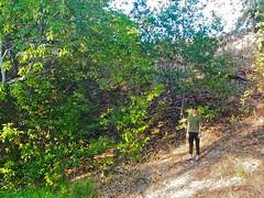Sean in his element (MannyAcosta) Tags: mountain bicycle creek san francisco mt grant marin walnut shell ridge biking headlands swift pedicab tam rivendell petersen lemond hillborne leoglas