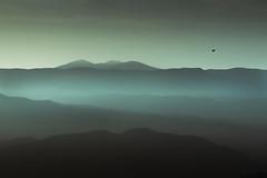 Vista desde Pano, Huesca (Norto) Tags: mist mountain mountains bird landscape solitude huesca silent pano paisaje minimal soledad minimalism montaa neblina niebla silencio pjaro graus
