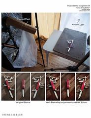 Swiss Army Knife-Setup (irene liebler) Tags: setup assignments p52pro283anglesswissarmyknife