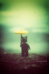 """The rain in Spain stays mainly in the plain."" (xxsjc) Tags: lego legos catwoman minifigure afol mounteerie toyphotography shellycorbett streamzoo toys4life xxsjc"