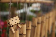2010-12-11 16-08-20 (Ammon Lin) Tags: danbo  danboard