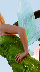 Tinkerbell | Believe Phone Wallpaper (chris.alcoran) Tags: world sleeping sea wallpaper portrait ariel girl beauty smile photoshop canon photography fly kiss do phone princess little theatre you goin alice disneyland jasmine mary under royal 85mm sigma tinkerbell down can disney pixie part fairy bayou your fantasy believe aurora faire series cinderella tiana mad dust aladdin wonderland 70300mm dig fantasyland hatter deeper iphone supercalifragilisticexpialidocious poppins 5s 30mm