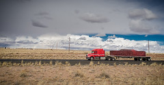 Truck_122712_LR-463.jpg (365Trucking.com) Tags: road arizona truck photo highway raw nef unitedstates transport semi transportation interstate heavyequipment shipping freight holbrook trucking 18wheeler flatbed tractortrailer bigrig stockphotography freightliner carriers stockimage roehl commercialvehicle microstock midroof 365truckingcom truckstockimagescom