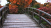 Crossing (dbushue) Tags: bridge autumn fall nature garden landscape japanesegarden nikon stlouis missouri 2012 missouribotanicalgarden coth supershot damniwishidtakenthat coth5 dailynaturetnc12 dailynaturetnc13