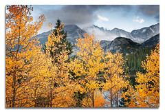 Rocky mountain autumn (Del.Higgins) Tags: bear park autumn trees mountain lake storm reflection del colorado rocky september national dell aspen estes delhiggins