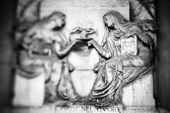 nel cuore (nicola tramarin) Tags: bw italy cemetery graveyard italia shift bologna tilt ts cimitero certosa tiltshift nicolatramarin