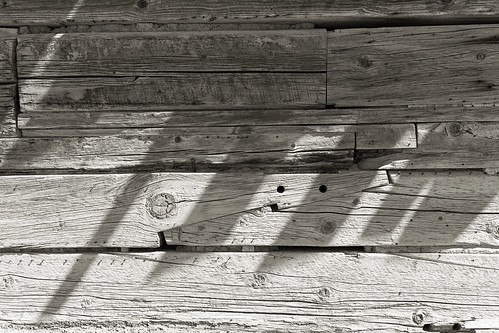 Shingle Shadows _8631