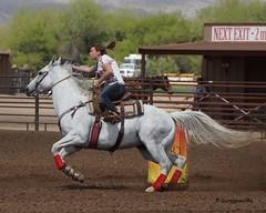 Wickenburg Barrel Race (Garagewerks) Tags: arizona horse woman sport female race cowboy all sony country barrel arena rodeo cowgirl athlete equine wickenburg 50500mm views50 f4563 slta77v