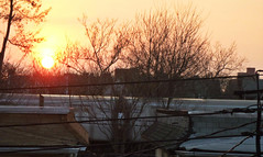Morning Train (Robert S. Photography) Tags: nyc morning trees sun colour brooklyn train sunrise spring samsung roofs 2014 st150f