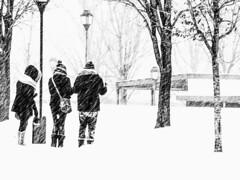 tourner le dos à l'hiver (photosgabrielle) Tags: photosgabrielle winter blackwhite noiretblanc snow hiver monochrome montreal vieuxmontreal oldmontreal bwphotography