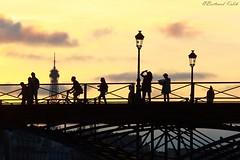 Les Parisiens (bertrand kulik) Tags: silhouette pont architecture ombrechinoise contrejour shadow paris eiffeltower france