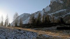 At the foot of Croda Granda and Agner (Dolomites) (ab.130722jvkz) Tags: italy veneto alps easternalps dolomites palagroup winter mountains