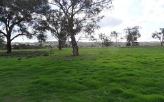 35 & 39 Rodda Drive, Cudal NSW