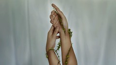 261/365 Budding (Katrina Y) Tags: hands handsinframe torns plant surreal surrealphotography fineartphotography fineart concept conceptual artsy art artistic mood manipulation