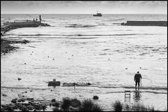 fisherman (enrico cinti) Tags: leica m8 summicronm 50mm 2ndtype rigid