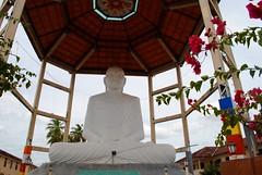 Anuradhapura Buddha Statue (nimmi khawe) Tags: staute temple buddha buddhastatue srilanka anuradhapura sadu