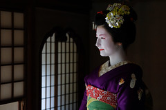Maiko_20170306_24_14 (kyoto flower) Tags: tondaya fukuno kyoto maiko 20170306 舞妓 冨田屋 ふく乃 京都 hidekiishibashi