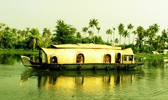 The Golden Tropical (Shrayansh Faria Photography) Tags: backwaters waters trees coconut green tropical lush