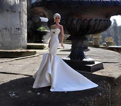 KD Elgin (kingdomdoll) Tags: elgin kingdomdoll kingdom doll icini wedding bride beautiful white regal resinfashiondoll fashiondoll