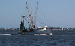Lady Michelle (2) (Gerry Dincher) Tags: southport northcarolina brunswickcounty capefearriver estuary smalltown smalltownnorthcarolina boat boats workingboats shrimpboat ladymichelle brunswickcatch