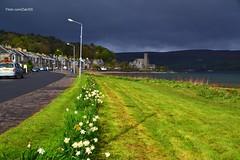 (Zak355) Tags: rothesay isleofbute bute scotland scottish ardbeg shore portbannatyne