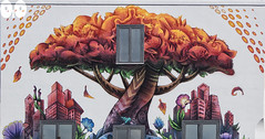 The Window on the Tree (occhio-x-occhio) Tags: rough watermark white morning web street cement oxo rome new mural art wall orange pinterest g fb flickr
