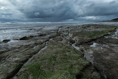 4/24/2017 (rainbow wasabi) Tags: cloudy rainy dark rainyseason oregon coast pacific northwest usa rock beach nature landscape seascape