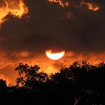 Spring Sunrise thumbnail
